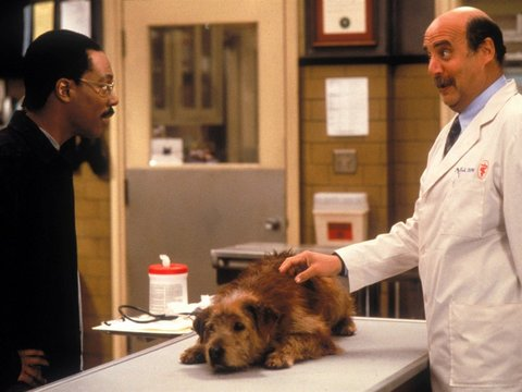 Doctor Dolittle 2 Movie Download Full Series Dolittle Movie Download Starbiz Com